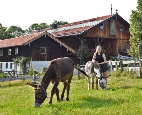 Esel mit Jugendlicher vor Jugendhaus Berghof